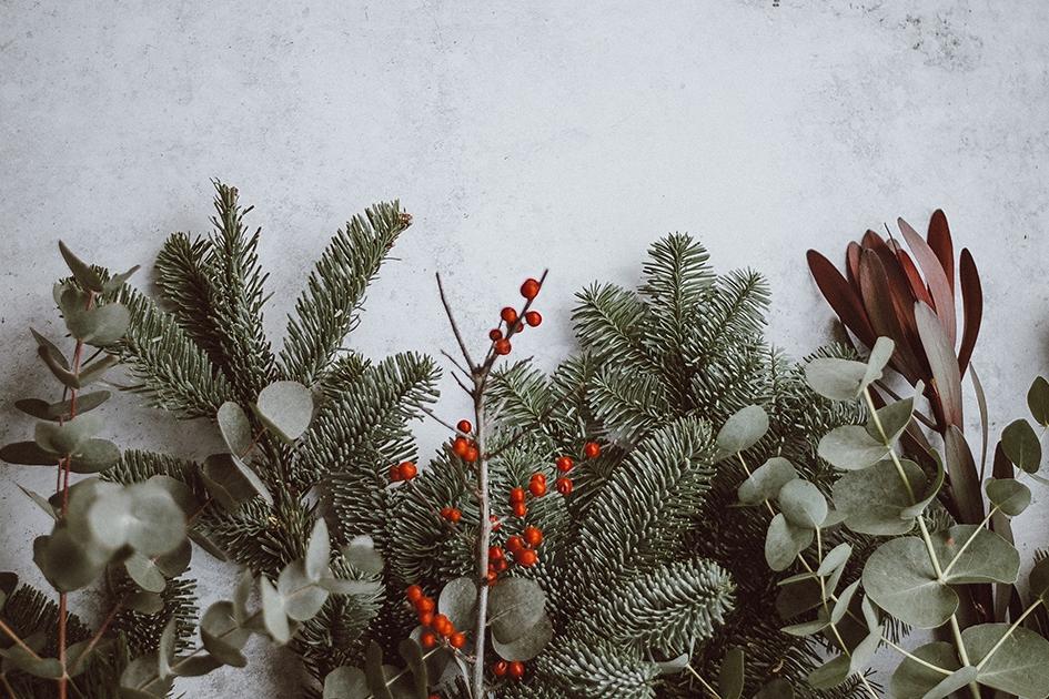 Boekentips voor kerst en nieuwjaar