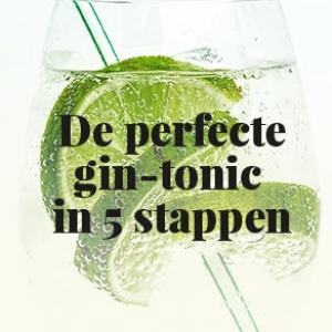 De perfecte gin-tonic in 5 stappen
