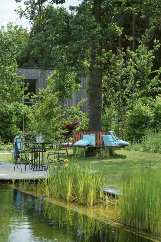 tuin vijver boom terras groen
