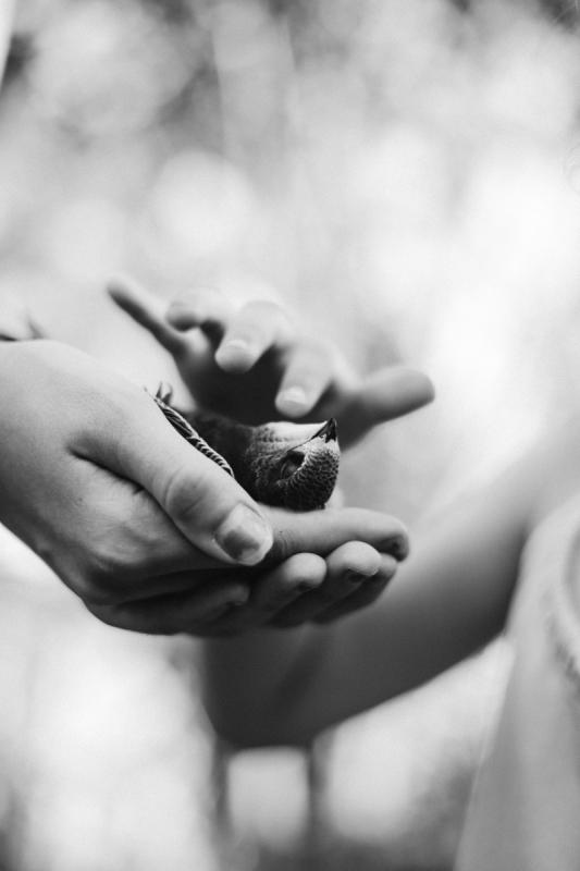 dode vogel in handen zwart wit