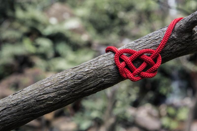 rode draad rond boom